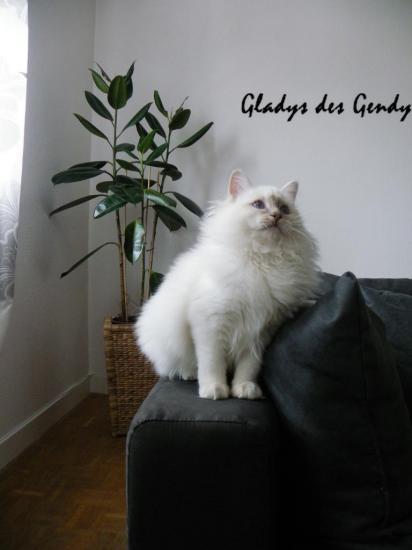 gladys-5-mois.jpg